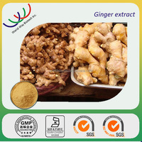 high quaity ginger root extract,High quality 6% Gingerols ginger extract / ginger root extract,