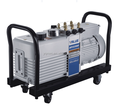 multi-channel vacuum pump VP2200 10 L/s two stage