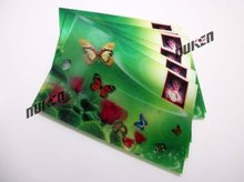 High Quality Motion Moving Customized Lenticular Stickers