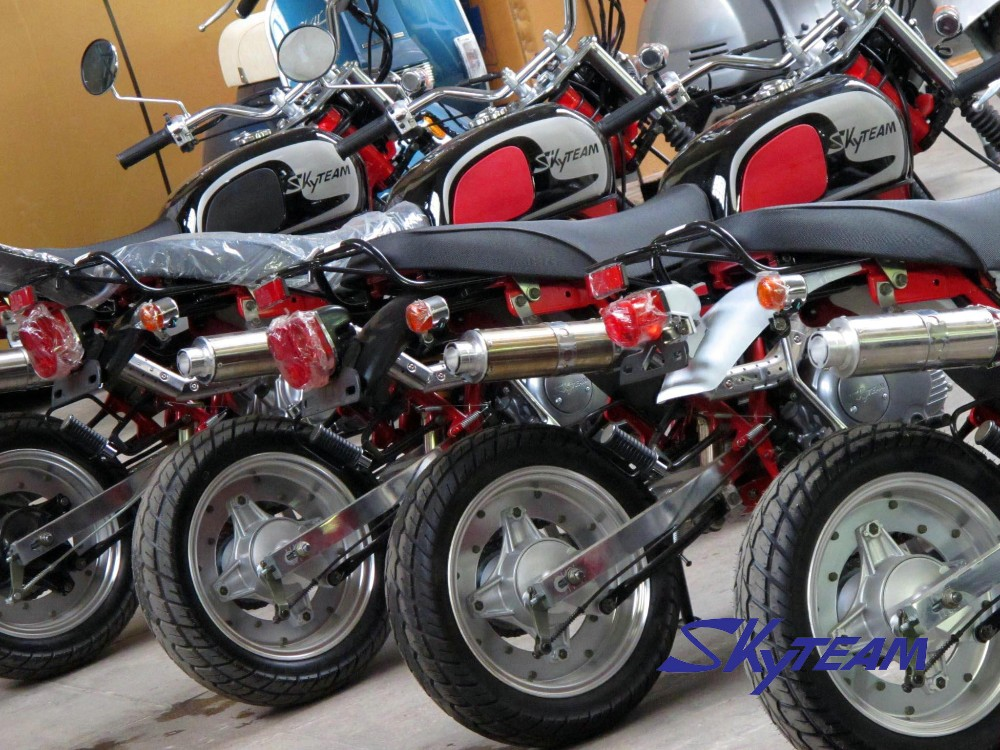 SKYTEAM EEC 50CC AND 125CC APE COBRA MONKEY MOTORCYCLE
