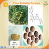 /product-detail/good-herbal-extract-100-natural-orange-flavor-powder-60263144969.html
