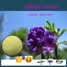 Professional Manufacturer supply pure natural alfalfa extract saponins
