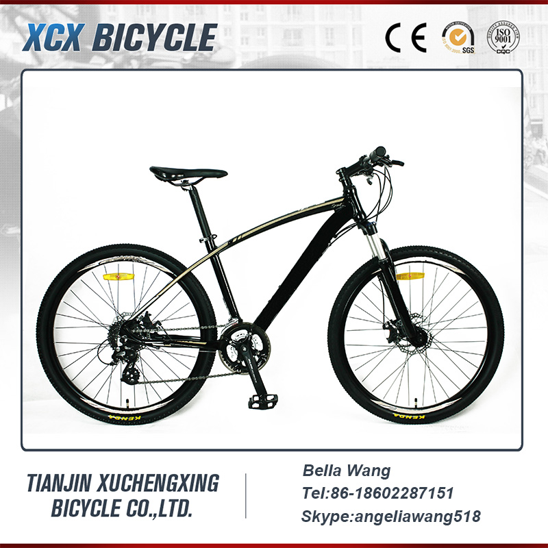 29 Downhill Mountain Bike