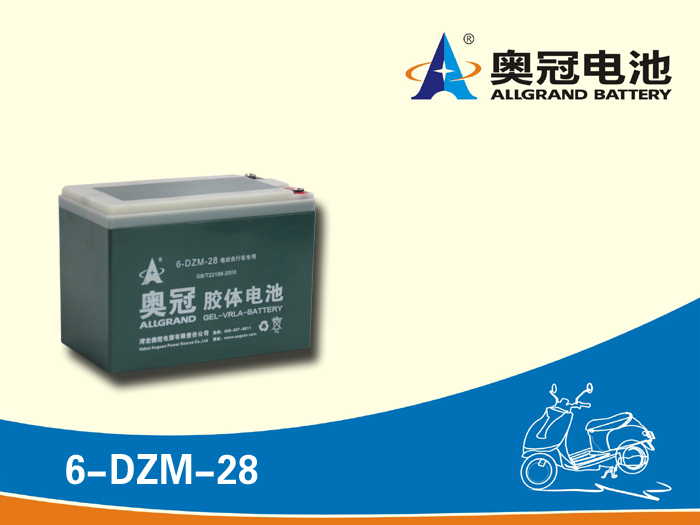 three wheel electric scooter battery 12v 28ah/E-bike battery/golfcart battery