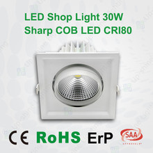 SAA CE ErP RoHs approved 30W rectangular LED recessed downlight shop light