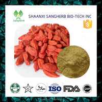 Pure red wolfberry extract / goji berry extract powder