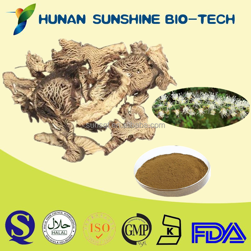 Customized Service Powdered Black Cohosh Extract