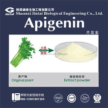 supply hot sale plant extract Apigenin 98% //520-36-5