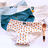 2017 Hot Sale Fresh fruit design young girl kids underwear for lady