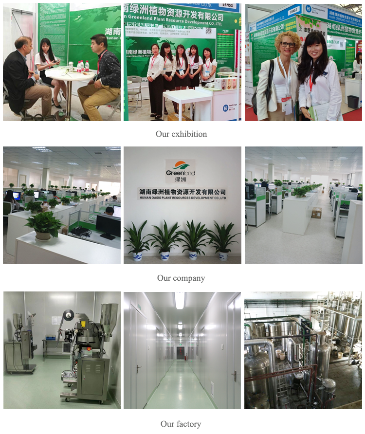 GarlManufacturer Supply Garlic Extract/Garlic Clovrowderedd Extract with high quality