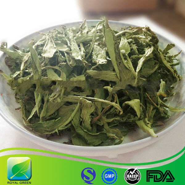 Factory supply dry stevia leaf extract RA98