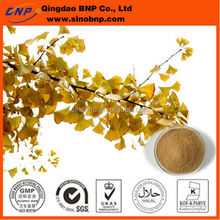 Natural ginkgo biloba leaf extract powder ginkgo biloba leaf extract 24/6