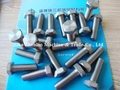 hex head bolt grade5 titanium bolt