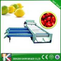 apple potato orange sorting grading machine/Fruit sorting grader/Jujube sorting grading machine