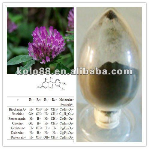 High quality Red clover P.E.Biochanins 20%