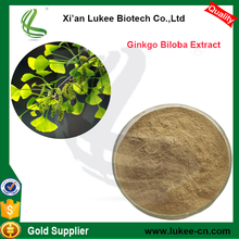 Natural Extract Powder of Dried Ginkgo Biloba Leaves