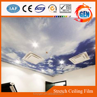 china cheap ceiling tiles pvc antirust stretch film