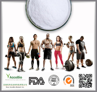 Sports Supplements BCAA in bulk, Instant BCAA 2:1:1, Bulk BCAA powder