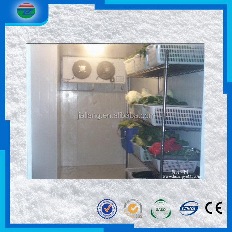 New Hot Fashion top level food cold storage/cold room freezer