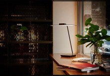 New product OLED light desk lamp with 320*110mm OLED module