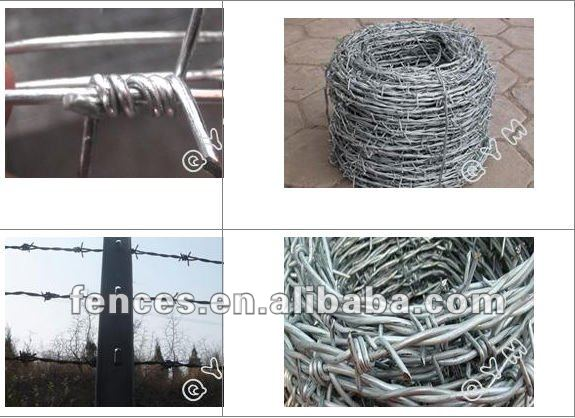 Hot sale Facrory Razor Wire/Barbed wire (exporter)