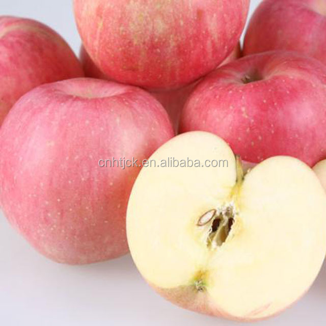Fresh And Orangic Fuji Apples Wholesale Best Fruit Prices