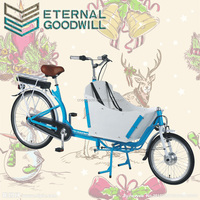 Electric adult tricycle cargo tricycle with 26inch 2 wheel cargo bike electric / bike bicycle / bakfiets trike for UB9015E