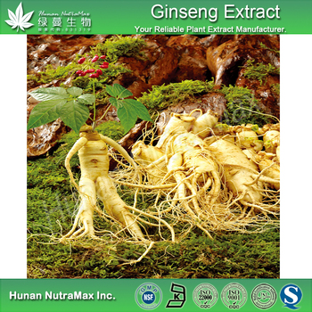 Low pesticide panax extract 5%~80% Ginsenosides/Factory price Korea Red Ginseng Extract