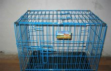 PVC coated Pet Cages/Dog cages/Bird cages (factory)