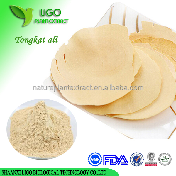 Pure tongkat ali extract powder for improve sexual performance