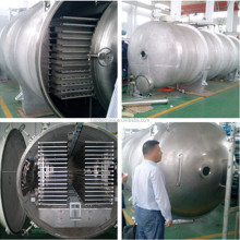Fruit and vegetables processing freeze drying equipment/dryer price with CE and ISO