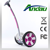 12 inch big tire Electric scooter self balance 55V 450Wh with handle bar