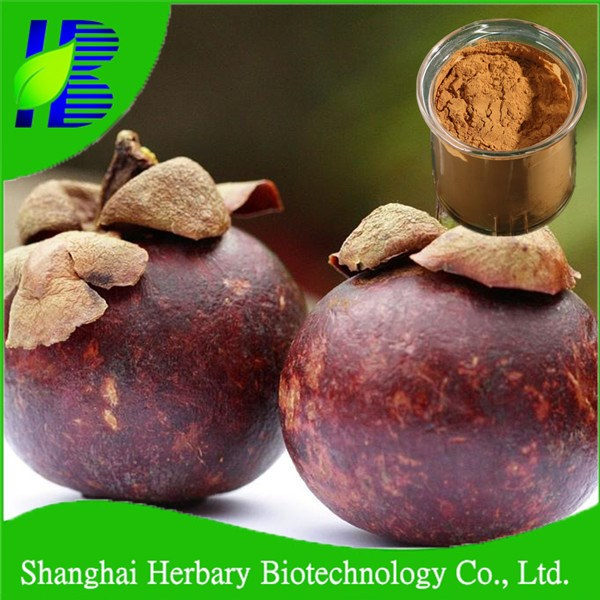 Manufacturer Supply extraction of mangosteen juice