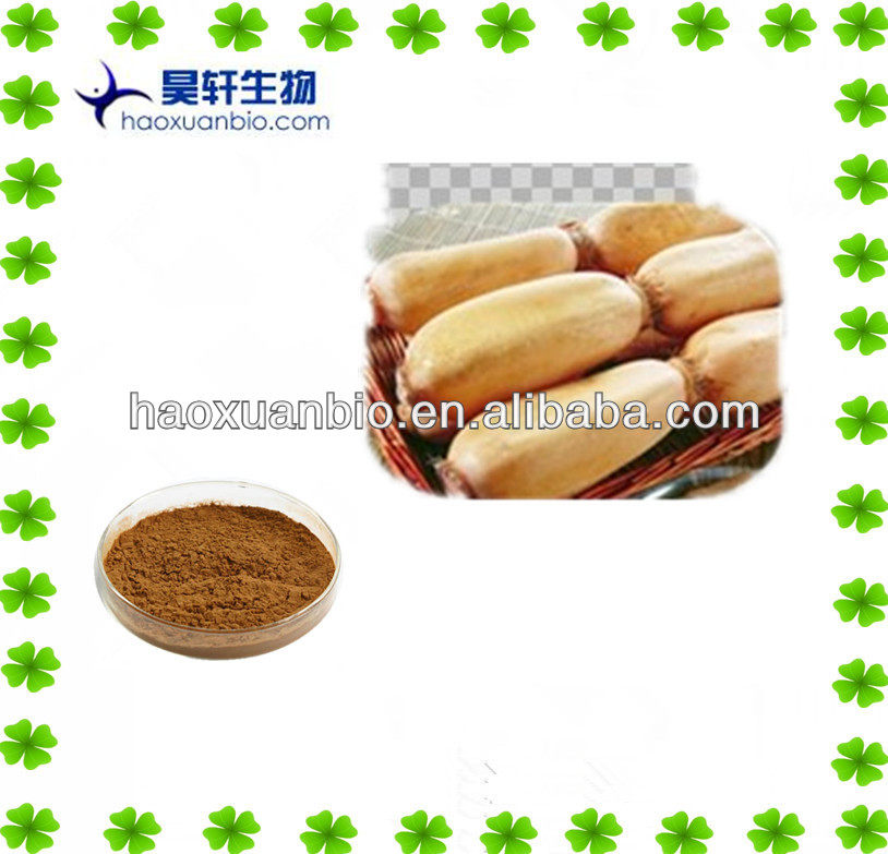 Lotus extract/lotus root powder/lotus leaf extract