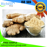 supply natural ginger extract powder