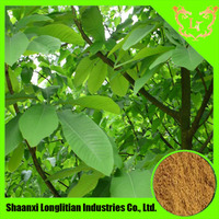 biond magnolia flower extract