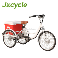 Hot Adult Three Wheel Electric Bicycle