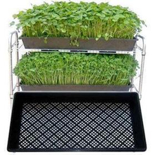 2019 Hot sale plastic black 1020 <strong>flat</strong> tray, grow wheatgrass hydroponics tray for nursery
