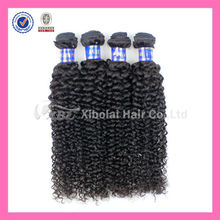 XBL Cheap Peruvian Kinky Curl Human Hair Weave