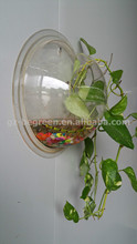 Wholesale Clear Fish Tanks,used fish tank for sale