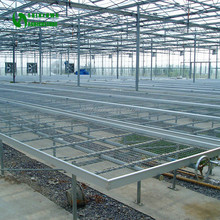 Thailand Orchid Nursery Equipment Professional Manufacturer
