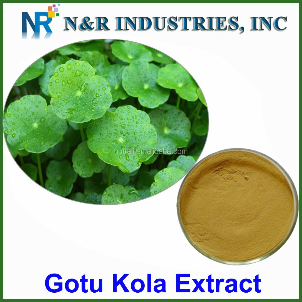 100% nature Gotu Kola ( Centella Asiatica)extract Total Triterpenoid glycosides 80%