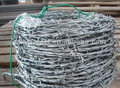 Single Line Crossed Type Barbed Wire