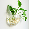 plant cultivation wall-mounted clear bowl acrylic fish tank