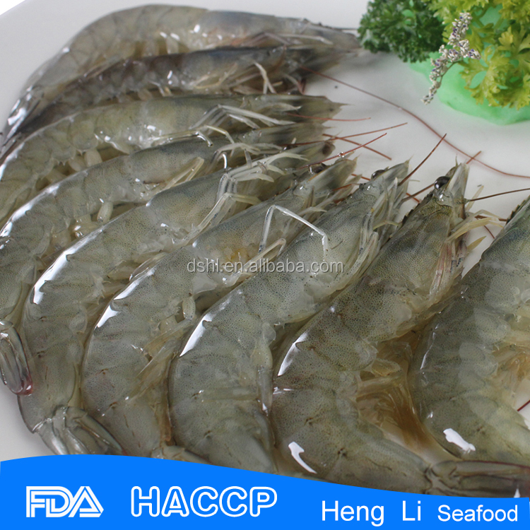 HL002 hot sale shrimp vannamei price