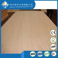 BS 1088 Laminated Marine Plywood Building construction material price of marine plywood in philippines