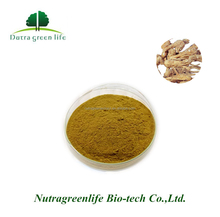 Chinese High Quality Bulk Angelica Root Extract