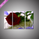 Modern 3D Red Rose Textured Canvas Flower Oil Painting for Home Decoration
