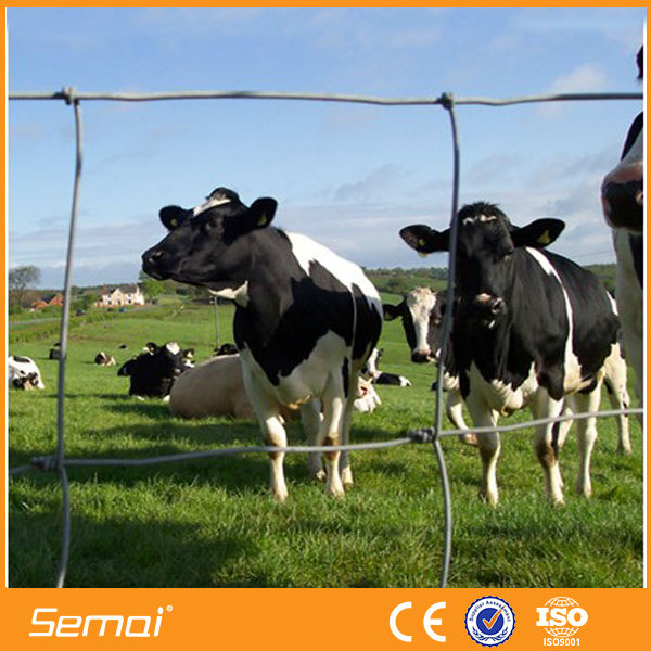 high quality hinge joint cattle livestocks fence price