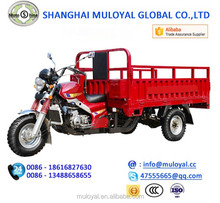 MS250ZH-RGX Cargo Tricycle China Petrol Tricycle Adult Tricycle Open Cabin